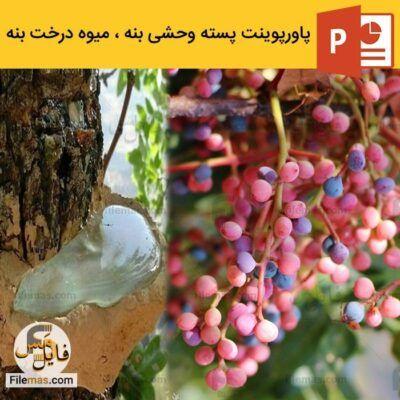 پاورپوینت تحقیق در مورد پسته ی وحشی بنه ، میوه درخت بنه کوهی – درخت صمغ سقز