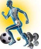 پاورپوینت پوکی استخوان و تأثیر ورزش بر آن